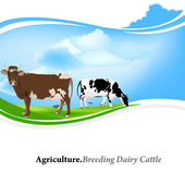 Farm animal,Agriculture.Breeding dairy Cattle.Vector background — Stok Vektör