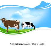 Gospodarstwo animal,agriculture.breeding cattle.vector mlecznych tło — Wektor stockowy
