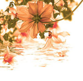 Beautiful flower card.Water flora — Stock fotografie