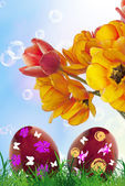 Easter.Eggs and Bouquet Flower Tulip.Spring Holiday — Stock Photo