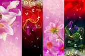 Beautiful Abstract Flower Card.Set background — ストック写真