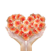 Heart Flower Roses in Woman Hands.Love concept.Beautiful Abstract Bouquet Roses — Stock Photo