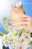 Natural Flower Cream for Woman hands — Stock Photo