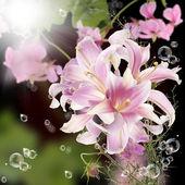 Fundo floral japonesa — Fotografia Stock
