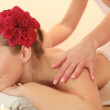 Royalty-Free Stock Imagem Vetorial: Spa theraphy