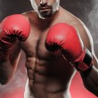 Boxer ready to fight — Stock Photo