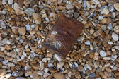 Crumpled and rusty tin can — Stockfoto