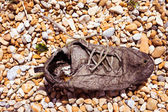 Old rotting lace up sneaker shoe — Stockfoto