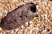 Filthy dirty rotting old lace up shoe — Stockfoto