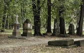 Cemetery in autumn. — Stock fotografie