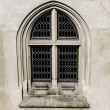 Stock Photo: Gothic window.