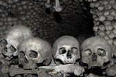 Human bones. — Stock Photo