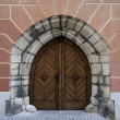 Gothic door. — Stock Photo #35381211