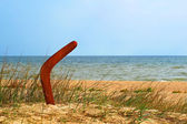 Brown boomerang on overgrown sandy beach. — Stock Photo