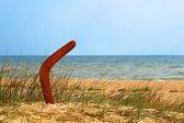 Bumerangue marrom na praia overgrown. — Foto Stock