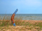 Color boomerang on overgrown sandy beach. — Foto Stock