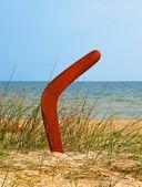 Coberto de bumerangue na praia. — Fotografia Stock