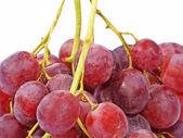 多汁的粉红色葡萄. — 图库照片