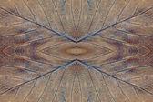 Autumn leaf symmetrical grunge texture. — Stock Photo