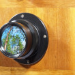 Old camera lens with green forest reflection. — Stock Photo