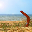 Landscape with boomerang on overgrown sandy beach. — Stock Photo