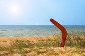 Paisagem com bumerangue na coberto de areia da praia. — Fotografia Stock
