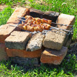 Appetizing  shashlik is preparing on barbecue. — Stock Photo