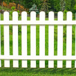 White fence in garden. — Foto Stock #29272225