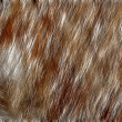 Abstract fluffy background. — Stock Photo