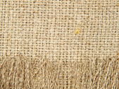 Natural linen texture with fringe taken closeup.Background. — Stock Photo
