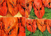 Collage of red boiled crawfishes taken closeup.Food background. — Stock Photo