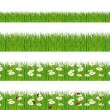 Green grass, ladybugs and daisies strips. Foregrounds vector collection. — Stock Vector #12084479