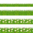 Green grass, ladybugs and daisies strips. Foregrounds vector collection. — Stock Vector