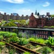 HIgh Line. Urban public park on an historic freight rail line, New York City, Manhattan. — Стоковая фотография