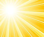 Glaring sunburst background. — Stock Vector