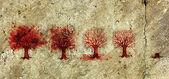 Proces van de boom levens in vijf fasen. — Stockfoto