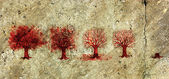 Process of the Tree Life in Five Stages. — 图库照片