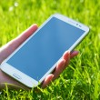 Foto Stock: WomHand Holding Smart Phone on Green Background