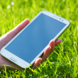 Stockfoto: WomHand Holding Smart Phone on Green Background