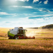 Stock Photo: Combine Harvester on a Wheat Field