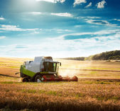 Combine Harvester on a Wheat Field — 图库照片