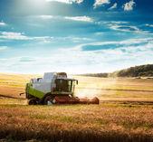 Moissonneuse batteuse sur un champ de blé — Photo