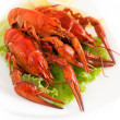 Lobster — Stock Photo #13511326