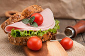 Tasty fresh sandwich — Stock Photo