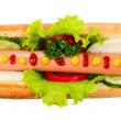 Tasty hot dog, food — Stock Photo #27680103
