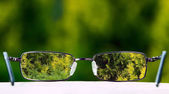 Eyeglasses on green nature background — Stock Photo