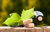 Wine bottle with currant leaves around — Stock Photo