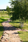 Path from stones — Stock Photo
