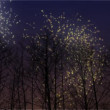 Fireworks Behind Winter Trees — Stock Video