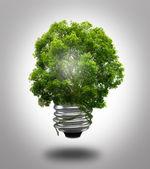 Eco žárovka — Stock fotografie